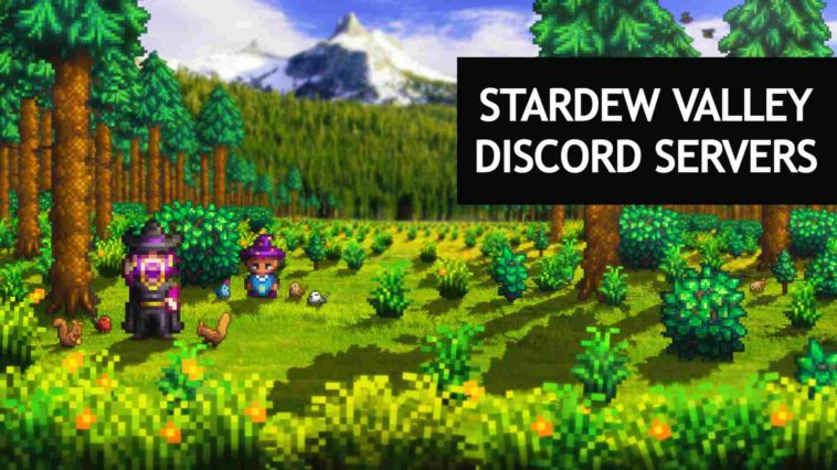 stardew valley discord servers
